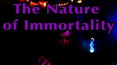 The Nature Of Immortality